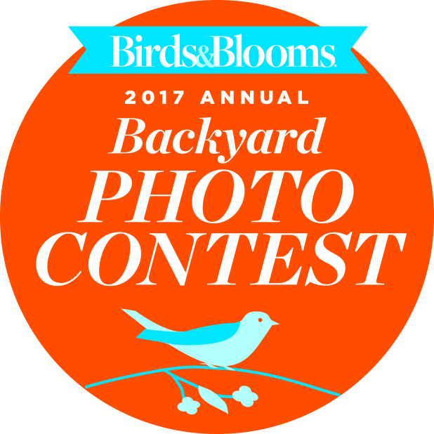 Enter the 2017 Backyard Photo Contest